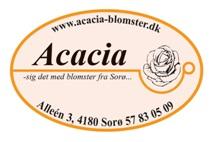 Acacia Blomster